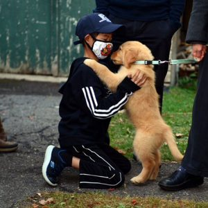 wish to have a puppy